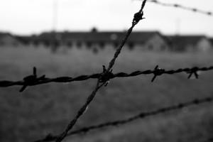 Birkenau Foto: Tone Lise Oevrum